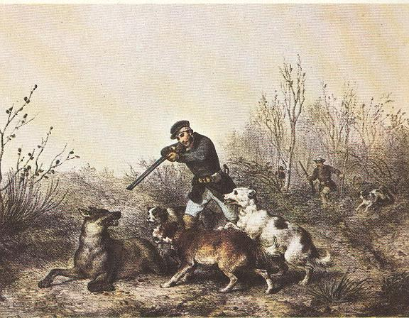 Ranchers killing wolves in the 19th century: Wolves and Livestock