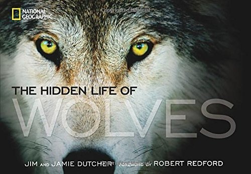 Gifts for wolf lovers: the hidden life of wolves