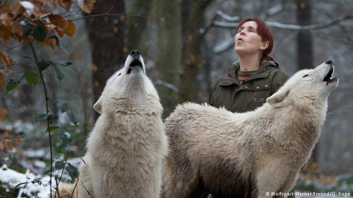 Tatjana Schneider Howling With Wolves: Women Managing German Wolves
